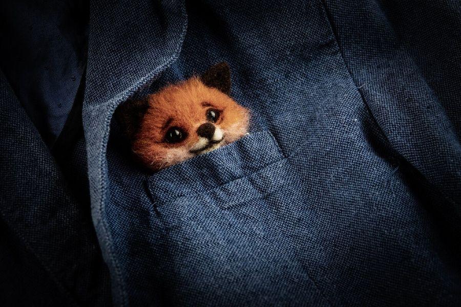 Лисенок в кармашке