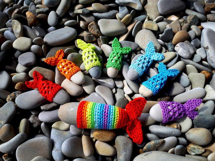 Радужные рыбки - подарок с моря, который точно понравится